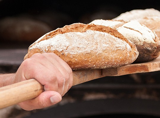 Boulangerie - Transgourmet, grossiste alimentaire