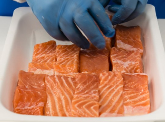Conditionnement - Transgourmet Seafood, grossiste poissons